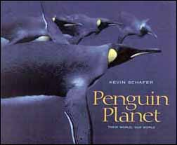 Kevin Schafer: Penguin planet