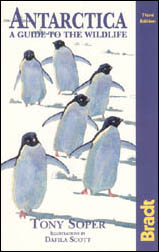 Antarctica. A guide to the wildlife